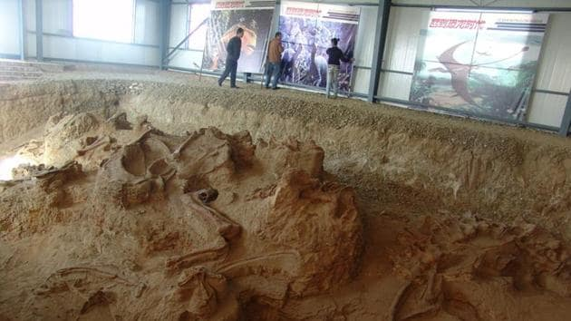 One of the four quarries producing fossils of Lingwulong, a newly discovered dinosaur unearthed in northwestern China.(REUTERS)