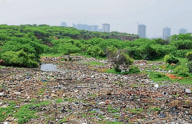 An illegal garbage dump has been growing for over six months in the Aravalli forest between Behrampur and Kadarpur villages of Gurugram district even as activists have raised the issue multiple times with MCG and forest department.(Parveen Kumar/ HT Photo)