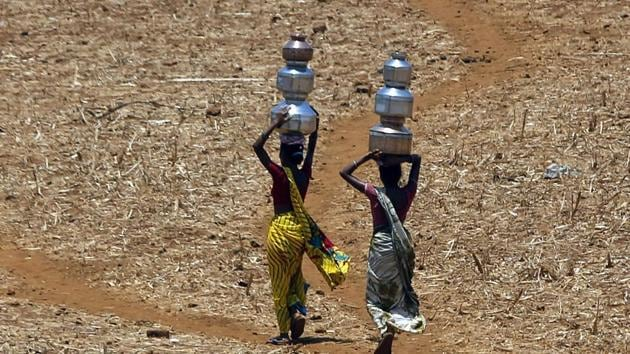 During the study period, 68% of the area was unable to support vegetation in a drought year. Of the 30 states and Union territories considered for the analysis, only 10 showed more than 50% resilience.(AP file photo)