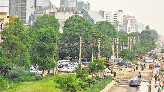 Nearly 10,000 fully grown up tree are to be felled for flyover and widening of Sohna Road, in Gurugram, Haryana.(Yogesh Kumar/HT File Photo)