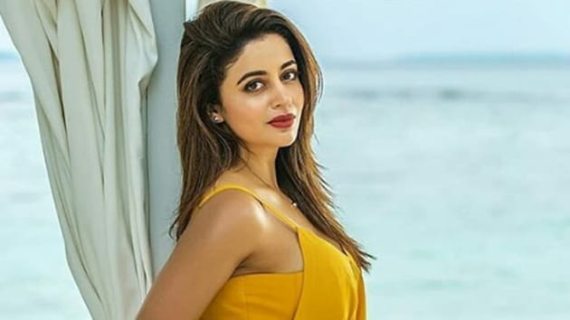 Neha Pendse quit the show she was working on to take part in Bigg Boss 12.