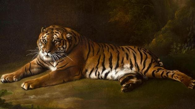 Photo of George Stubbs' painting from life of the Bengal tiger in the late 18th century.(Blenheim Palace Photo)