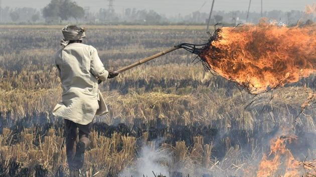 Delhi is one of the most polluted cities in the world. Road dust, vehicular emission and crop burning in neighbouring states are major sources of air pollution in the national capital, especially in winter months.(Burhaan Kinu/HT File Photo)