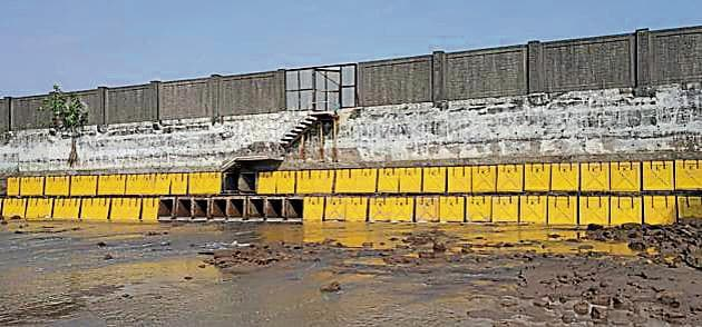 The Cidco has allowed tidal water ingress to the Panje wetlands in Uran, Navi Mumbai, by opening 10 of the 76 outlets that had been blocked.(HT Photo)