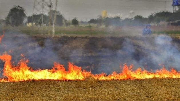 Despite the state government and the Punjab Agricultural University's drive against stubble burning, farmer unions are making announcements at different villages to continue stubble burning as the government has failed to address the issue.(HT File)