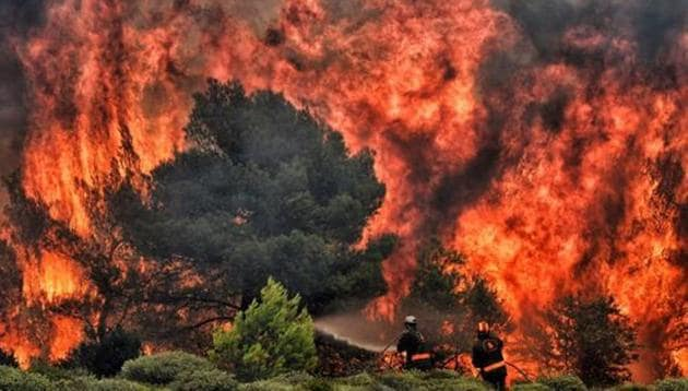 Dry and moist deciduous forests in the borderlands of Chhattisgarh, Maharashtra and Telangana are affected by fires every year.(AFP File Photo)