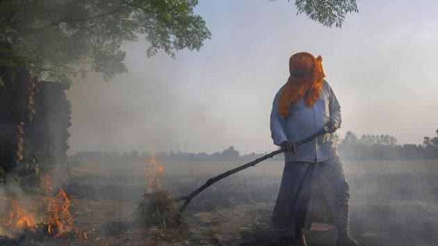 Amritsar: Smoke rises as a farmer burns paddy stubbles at a village on the outskirts of Amritsar, Friday, Oct 12, 2018. Farmers are burning paddy stubble despite a ban, before growing the next crop. (PTI Photo) (PTI10_12_2018_1000108B)(PTI)