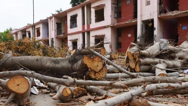 Trees felled for the redevelopment project at Netaji Nagar residential colony, in New Delhi(Vipin Kumar/HT PHOTO)