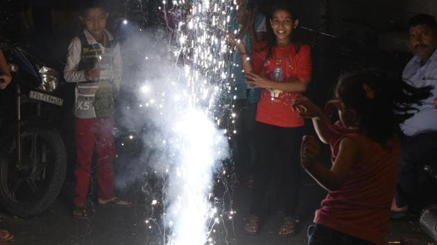 Brace for a polluted Diwali now, warn experts after Supreme Court order
