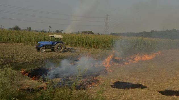 The contribution from crop fires is usually between 10% and 30%, depending on the number of fires in the northern states and the wind direction, the IMD scientist said.(HT File Photo)