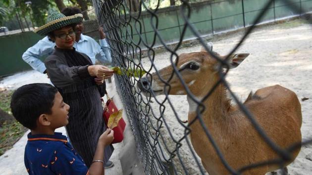 Feeding animals inside the Kolkata zoo is rampant despite restrictions imposed by the authorities.(Arijit Sen)