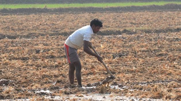 About 90% of the rural constituency in Chhattisgarh and Madhya Pradesh and 70% in Rajasthan are agricultural(HT File Photo)