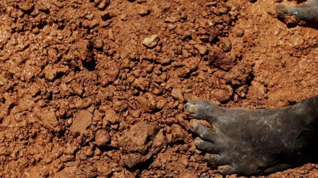 At least 30 people were killed when a gold mine collapsed in northeastern Afghanistan on Sunday. (Representational Image)(REUTERS)