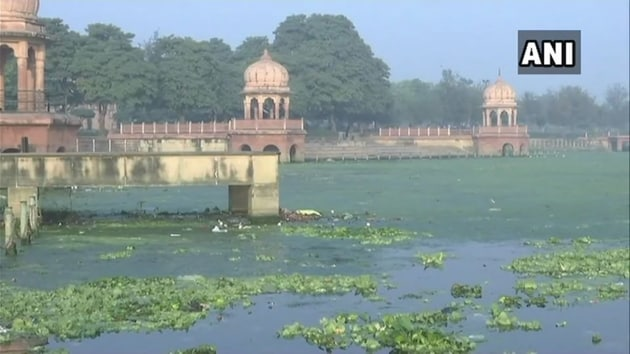 Devotees say pollution has turned the Gomti river in Lucknow toxic.(ANI)