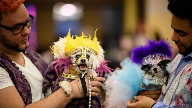 Two owners hold up their dogs, dressed up for the show. There was also the presentation of the Golden Paw awards for those work to support animals. (Johannes Eisele / AFP)
