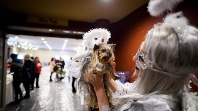 An owner in an outfit matching her dog, holds it up as they wait backstage to walk the ramp. (Johannes Eisele / AFP)