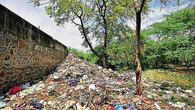 A pile of garbage (top) and the remains of a felled tree (right) inside Jahanpanah City Forest in south Delhi.(Burhaan Kinu/HT Photo)