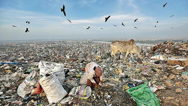 A rag picker collects usable items from a pile of waste at the Bhalswa landfill(Burhaan Kinu/HT Photo)