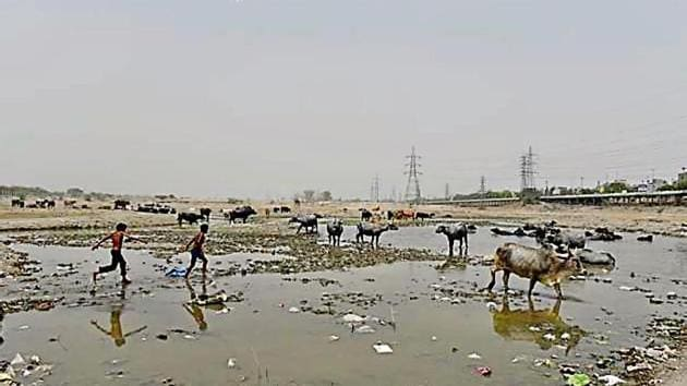 Ghonda Gujran waste plant will poison Yamuna: Experts(HT File)