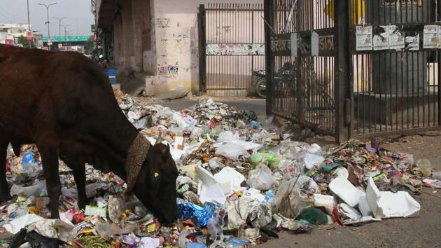 Garbage lying near the entrance of a colony in Sodala, in Jaipur.(HT Photo)