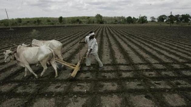 Farmers Suicide - Manmohan Singh Tour to Vidarbha - Agriculture - Fields - Farmer - Plough - Bajirao Kadsakhe at Wardha - HT Photo by 01-07-06(Rajanish Kakade/ HT FILE Photo)