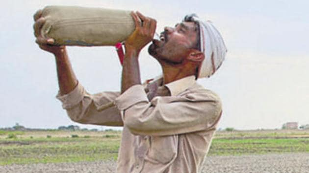 The entire agriculture belt of northern and western Rajasthan, groundwater levels have fast depleted and are now in a critical stage.(AP)