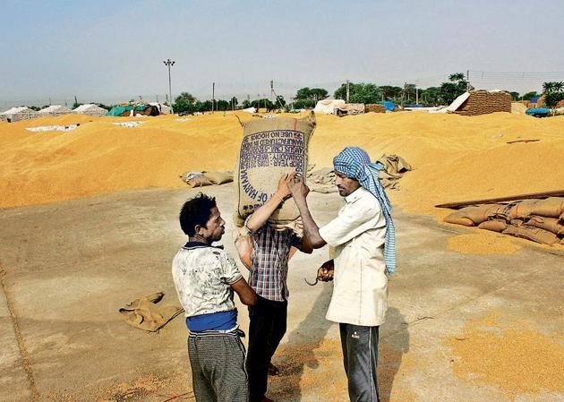 A worker carries a sack of grains, at Anaj Mandi, Haily mandi, in Gurugram(Yogendra Kumar/Hindustan Times)