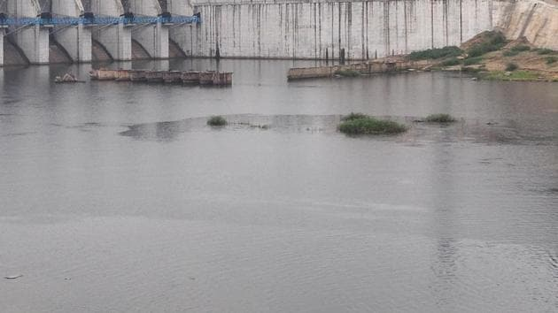 Three members of a family, including a minor, drowned in the backwaters of the Jadhavwadi dam (FOR REPRESENTATIONAL PURPOSE ONLY)(ht file photo)