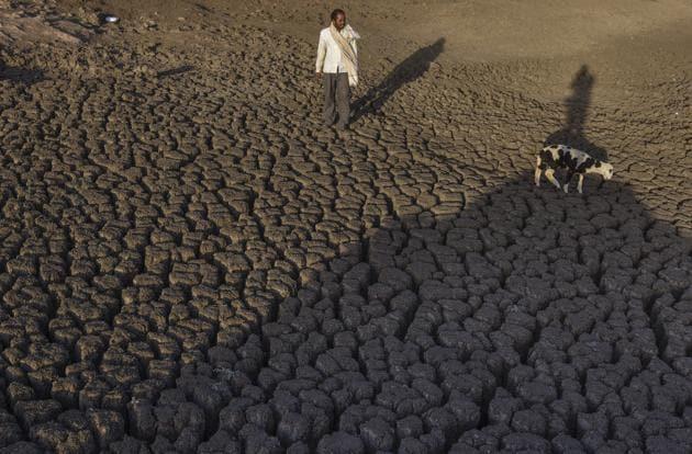The dried up Bendsura Dam near Bheed in Marathwada.(Satish Bate/ Hindustan Times)