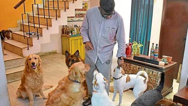 A man seen at a home stay for dogs, at Palam Vihar, Sector 23, in Gurugram.(Yogesh Kumar/Hindustan Times)