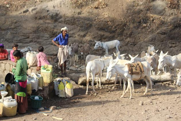 Residents of two villages in tribals dominated Alirajpur district in Malwa region are dependent on a well on the riverbed near their villages. The river goes dry during the summer season.(HT Photo)