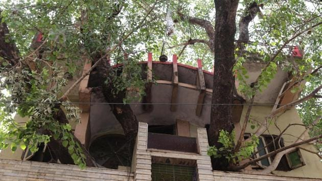 Instead of cutting down a holy fig tree, the Kesharwanis decided to construct a house around it.(AFP File photo)