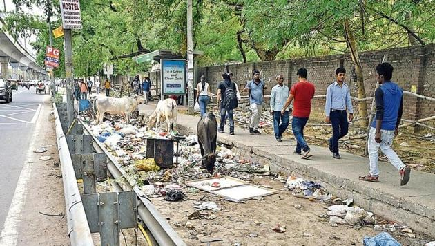 Just 50 metres away from Ghitoni Metro station, the track has turned into a dumping ground with stray cattle feeding on the waste. Pedestrians cover their face as they walk on the uneven pavement next to it.(HT Photo)