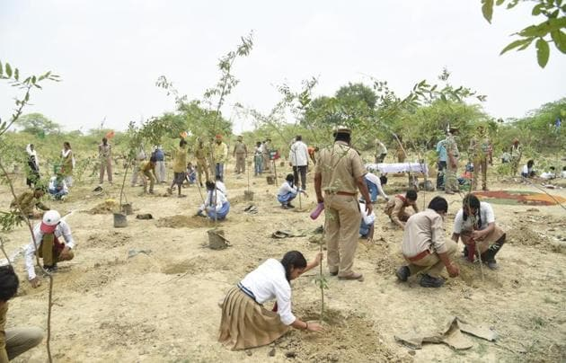 The minister said plants, as per the targeted requirement, were ready in 1,490 nurseries of the department.