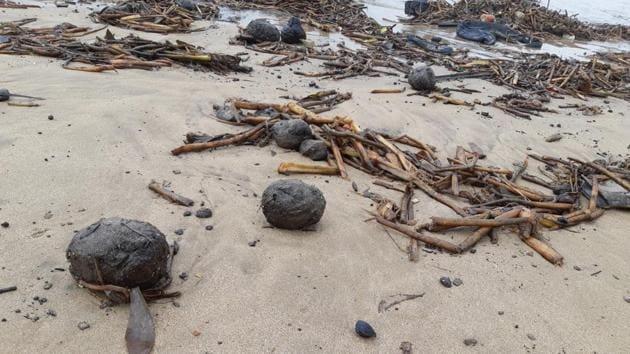 BMC has warned visitors not to touch the tar balls on Juhu beach.(Sarita Fernandes/Vanashakti)