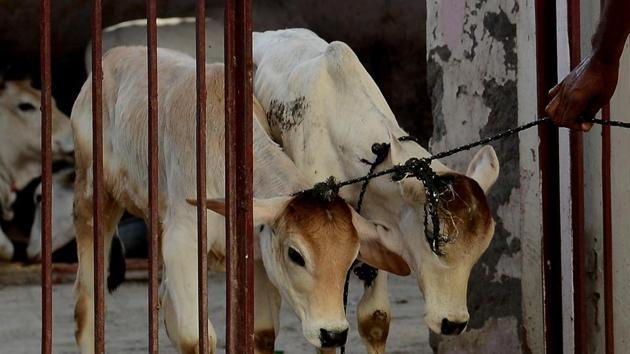 Three men were beaten to death by a mob over a suspicion they were stealing cattle in a village in Bihar's Saran district on Thursday night. (Representative Image)(AFP)
