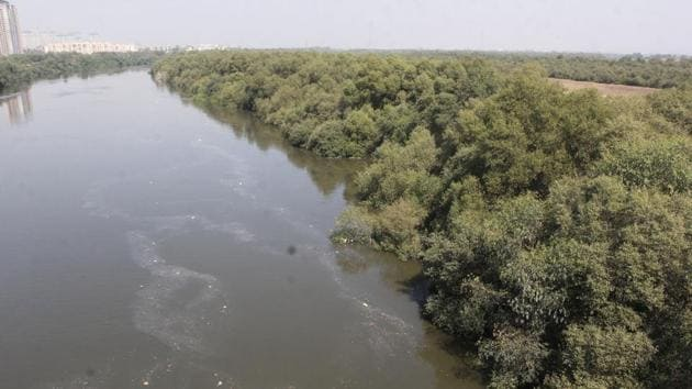 The state forest department approved to grant around 1.44 acre (0.58 hectare) of mangrove forest land to the Mumbai Metropolitan Region Development Authority (MMRDA) for constructing a six-lane bridge over the Ulhas creek connecting Thane and Dombivli.(Praful Gangurde/ Hindustan Times)