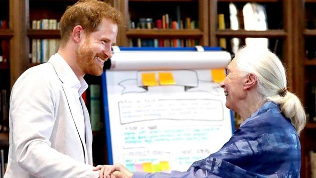 The Duke and Duchess of Sussex's official Instagram page shared the video of Harry's sweet gesture.
