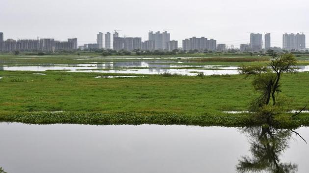 5,600 acres of land in eight villages remain submerged almost throughout the year because of frequent flooding and submerging of Najafgarh jheel. State human rights commission has sought a report.(HTPHOTOS/Vipin Kumar)