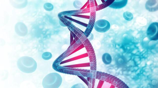 New Delhi Gene editing technology cannot be used for germline engineering or any genetic modifications that can be passed on to the next generation, according to draft guidelines released by on Friday.(Getty Images/iStockphoto)