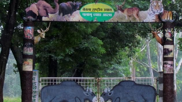 The Palamu Tiger Rserve in Jharkhand is one of the original nine tiger reserves notified in 1974 under the Project Tiger.(HT File Photo)