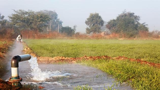 Narendra Modi government is set to unveil a series of measures to reduce water consumption in India's agriculture sector(Getty Images/iStockphoto(Representative Image))