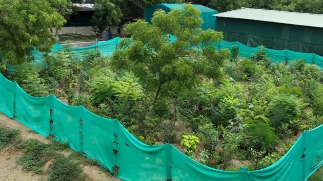 The BMC is in the process of drafting a policy regarding the 1,068 gardens and playgrounds in the city, with the aim of improving them.(HT image)