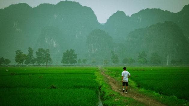 They belong to Vietnam's only rugby programme for locals, rolled out for kids in a remote commune where some players have to travel by boat to training sessions often held against a backdrop of rice terraces and curious onlookers.(Unsplash)