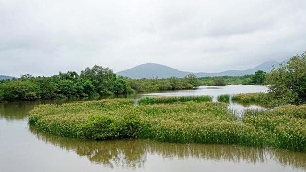 The river Kali flows from the east-west direction on the northern side of the project site, which is adjoining the Dandeli-Anshi Tiger Reserve.(HT FILE)
