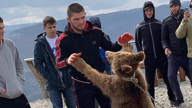 Khabib wrestles a bear.(@khabib_nurmagomedov)