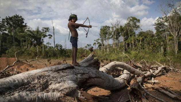 "Seven-year-old Emilia Tembe pulls back on her hand-crafted toy bow and arrow made of sticks and leaves as she stands on a fallen tree, in the Ka' a kyr village, Para state, Brazil. ""This part used to be a native forest. This was primary jungle. But the fire arrived and it cleared the land,"" said Emidio Tembe, Emilia's grandfather and the Ka' a kyr chieftain who named the village. (Rodrigo Abd / AP)"