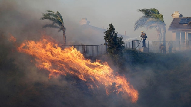 The region has been on high alert as notoriously powerful Santa Ana winds brought dry desert air to a desiccated landscape that only needed a spark to erupt.(AP image)