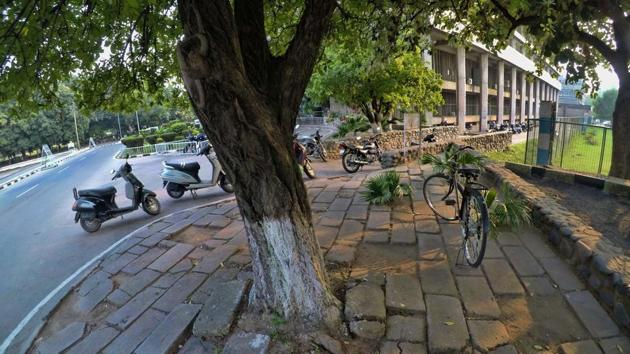 Concreting the space around trees leaves no breathing space, putting the life of trees under threat. The guidelines of the ministry of urban development state that a minimum area of 1.25 x 1.25 metre around the trees should be left uncemented.(HT PHOTO)