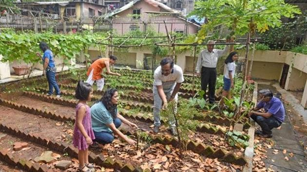 Residents of Kohinoor Apartments working at their quarter of an acre organic kitchen garden at Kurla (West) in Mumbai.(Pratik Chorge/HT PHOTO)